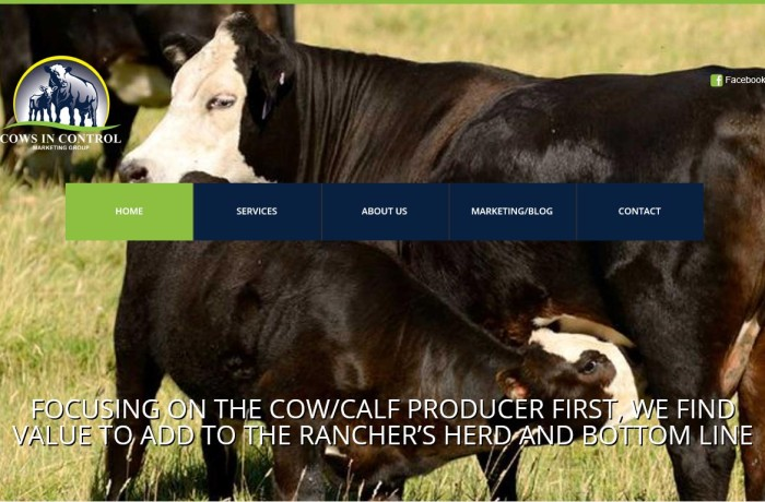 Cows in Control